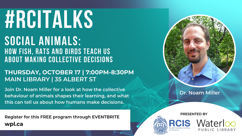 RCI Talks - Oct 2019
