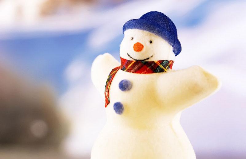 Holiday Program Guide Promo
